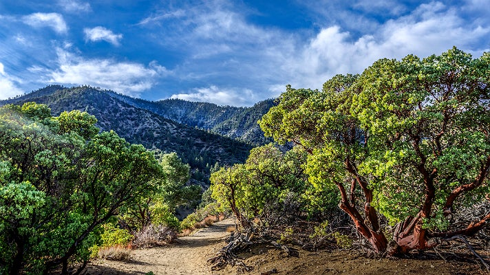 Devil's Punchbowl in Pearblossom, California