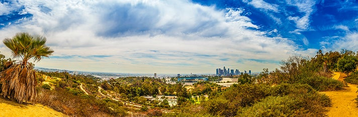Downtown L.A. viewed from Elysian Park