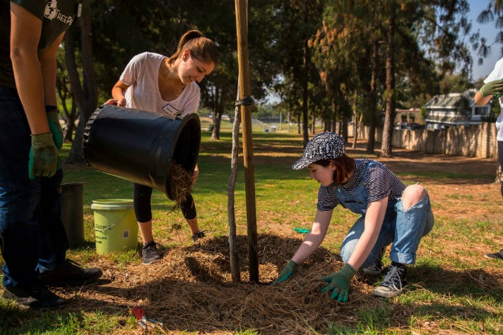 Planting a new tree with TreePeople