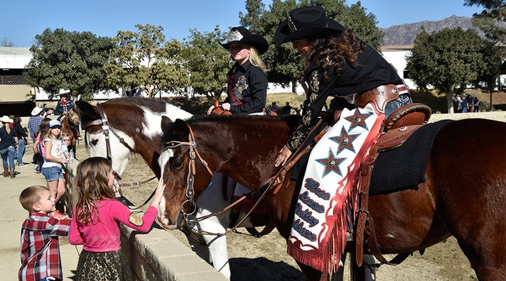Equestfest in Burbank for Tournament of Roses