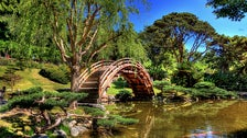 Moon Bridge at The Huntington Library