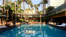 Tropicana Pool at the Hollywood Roosevelt Hotel