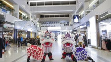 Lion dancers celebrate Lunar New Year at LAX Tom Bradley International Terminal