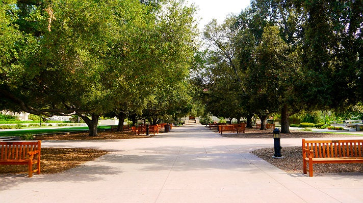 """Central Quadrangle at Occidental College from """"Clueless"""""""