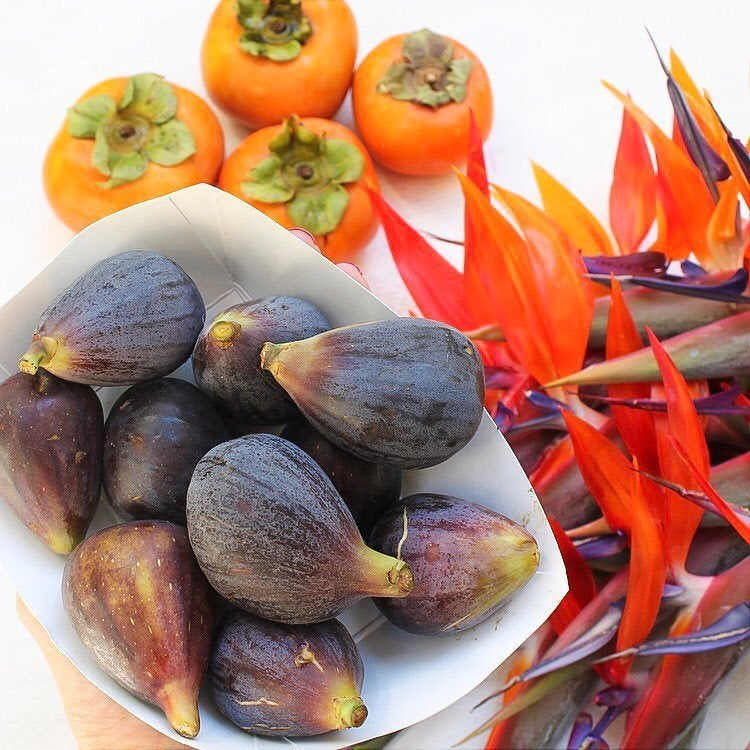 Figs, persimmons and birds-of-paradise at the Hollywood Farmers' Market